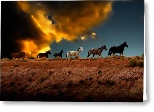 Wild Horse Greeting Cards - Wild Horses at Sunset Greeting Card by Harry Spitz