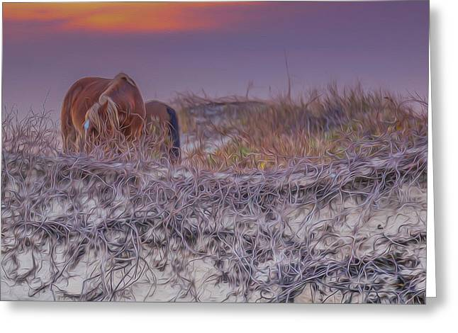 Sea Horse Greeting Cards - Wild Horses of Outer Banks Greeting Card by Laurie Martin