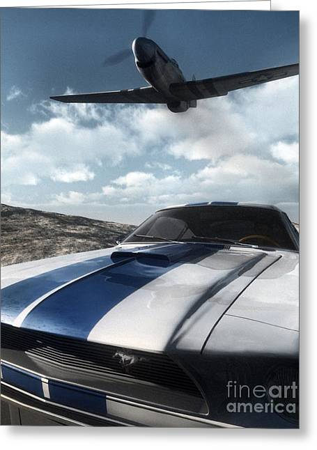 P51 Mustang Greeting Cards - Wild Horses Greeting Card by Richard Rizzo