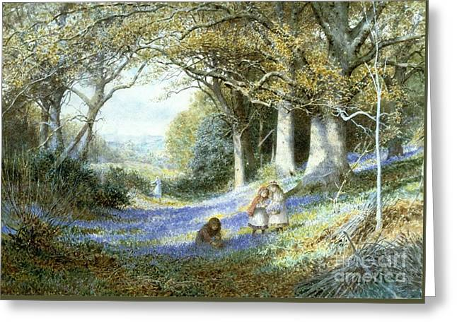Wild Hyacinths Greeting Card by Charles Gregory