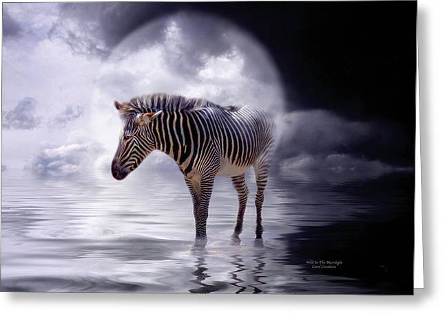 Prints Of Zebras Greeting Cards - Wild In The Moonlight Greeting Card by Carol Cavalaris