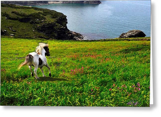 Wild Little Pony Greeting Card by Vicki Lea Eggen