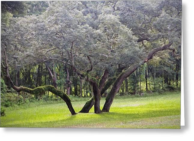Brush.media Greeting Cards - Wild Oak Greeting Card by Richard Rizzo