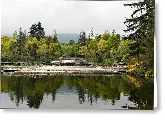 Wild Park Cascade - Autumn Arriving Softly Greeting Card by Georgia Mizuleva
