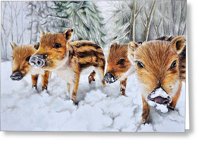 Piglets Greeting Cards - Wild Piglets Greeting Card by Stefan Peters