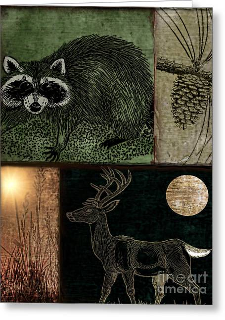 Rustic Cabin Greeting Cards - Wild Racoon and Deer Patchwork Greeting Card by Mindy Sommers