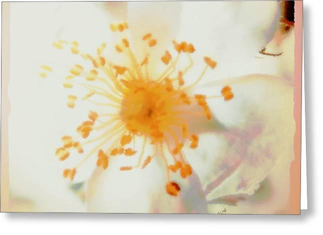 Layers Greeting Cards - Wild Rose of Alabama Greeting Card by Anita Faye
