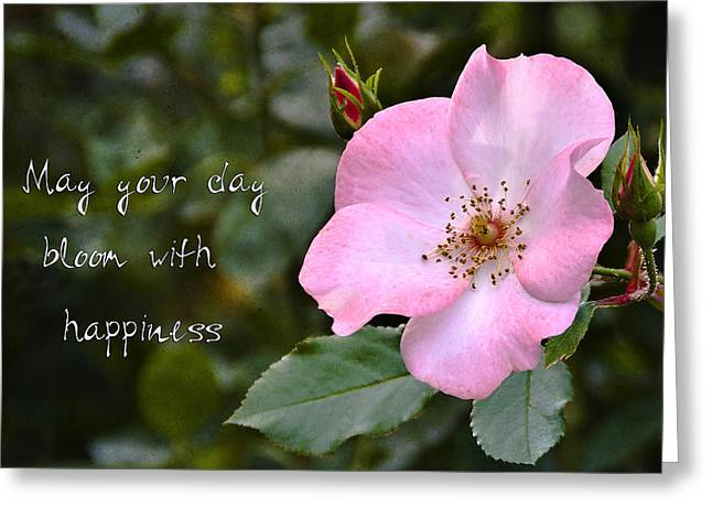 Wild Rose With Quote Greeting Card by Marion McCristall