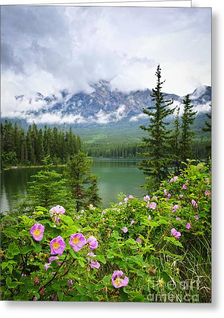Alberta Landscape Greeting Cards - Wild roses and mountain lake in Jasper National Park Greeting Card by Elena Elisseeva