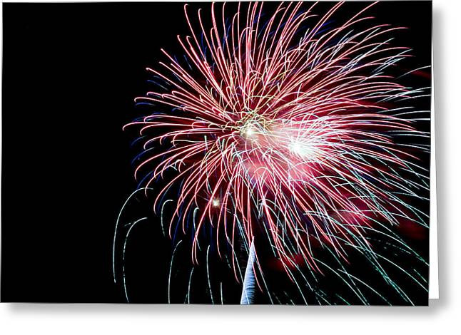 4th July Photographs Greeting Cards - Wild Sky Flower Greeting Card by Phill  Doherty