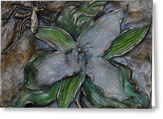 Rocky Mountain Reliefs Greeting Cards - Wild Trillium and Cranefly  Greeting Card by Dawn Senior-Trask
