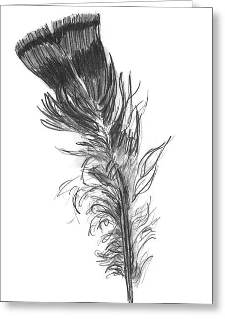 Wild Life Drawings Greeting Cards - Wild Turkey Feather Greeting Card by Kevin Callahan