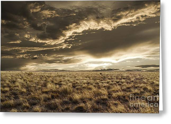 Wheat Field Sunset Print Greeting Cards - New Mexico Field Sunset Greeting Card by Andrea Hazel Ihlefeld