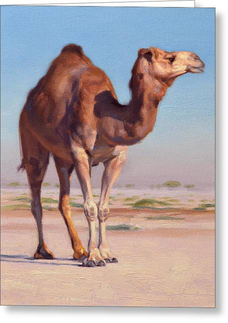 Desert Paintings Greeting Cards - Wilderness Camel Greeting Card by Ben Hubbard