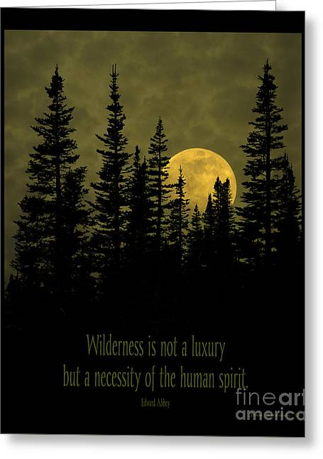 Wilderness Is Not A Luxury Greeting Card by John Stephens