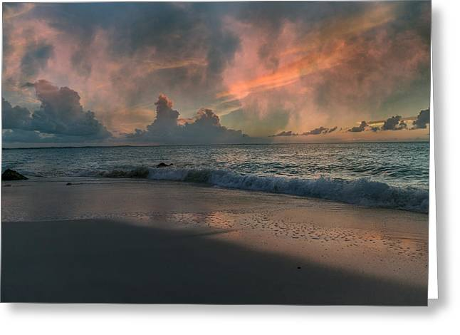 Wilderness Ocean Greeting Card by Betsy Knapp