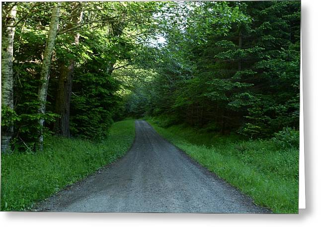 Gravel Road Mixed Media Greeting Cards - Wilderness Road Greeting Card by Michael Wick