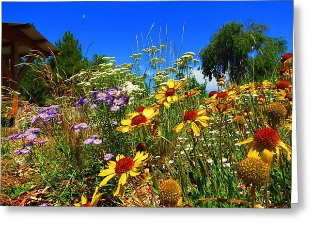 Wildflower Garden Greeting Card by Leah Grunzke