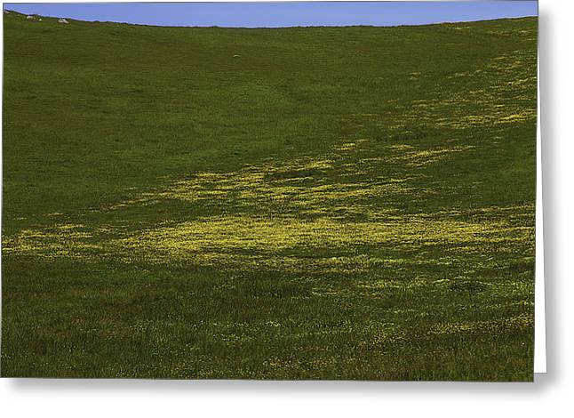 Wildflower Hillside Greeting Card by Garry Gay