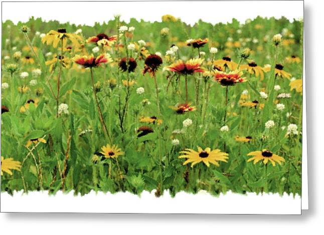 Vignette Greeting Cards - Wildflower Meadow Greeting Card by JQ Licensing
