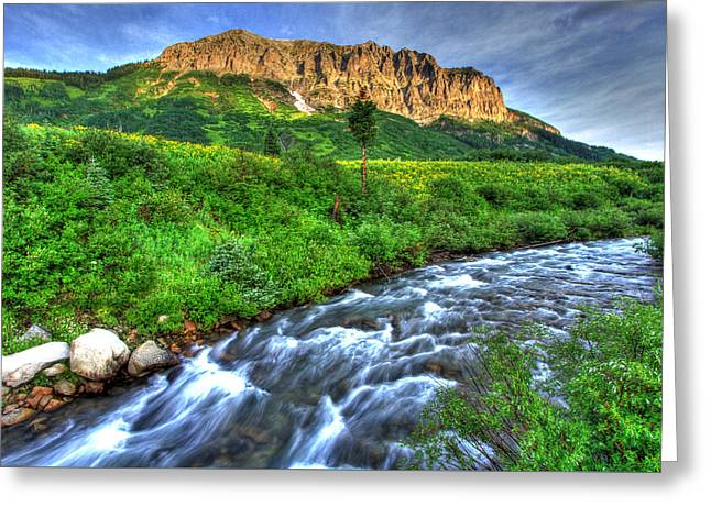 Wildflower River Greeting Card by Scott Mahon