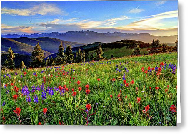 Wildflower Sunset Hill Greeting Card by Scott Mahon