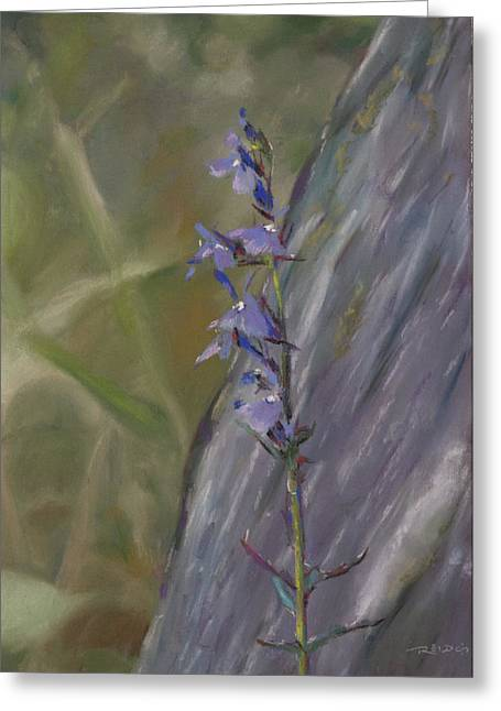 Violet Pastels Greeting Cards - Wildflowers Greeting Card by Christopher Reid