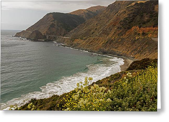 Big Sur Greeting Cards - Wildflowers Meets The Pacific Greeting Card by Willie Harper