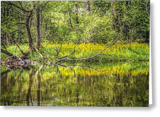 Wildflowers On The River Greeting Card by Debra and Dave Vanderlaan