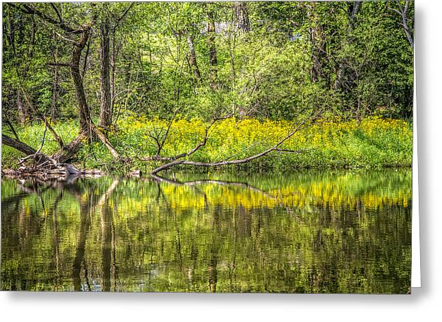 Reflections In River Greeting Cards - Wildflowers on the River Greeting Card by Debra and Dave Vanderlaan