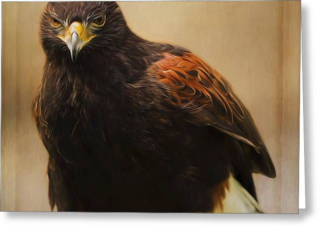 Wildlife Art - Patience And Perseverance Greeting Card by Jordan Blackstone