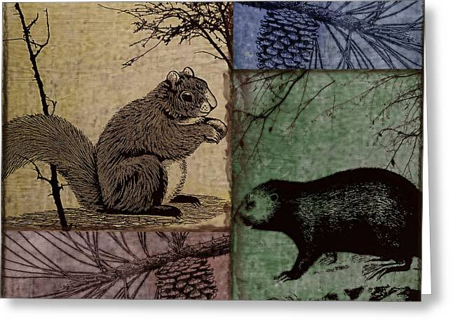 Critter Greeting Cards - Wildlife Patchwork Squirrel Greeting Card by Mindy Sommers
