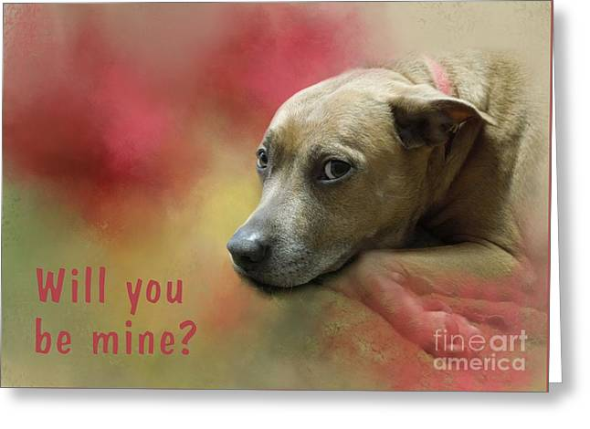 Will You Be Mine? Greeting Card by Renee Trenholm
