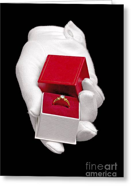 Isolated On Black Background Greeting Cards - Will you marry me Greeting Card by Richard Thomas