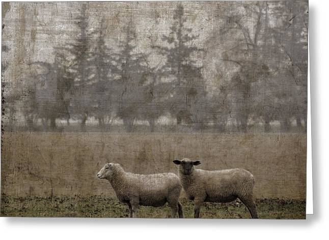 Duo Greeting Cards - Willamette Valley Oregon Greeting Card by Carol Leigh