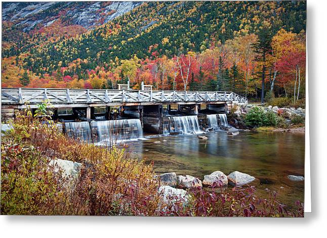 Willey Pond Damn Foliage Greeting Card by Eric Gendron