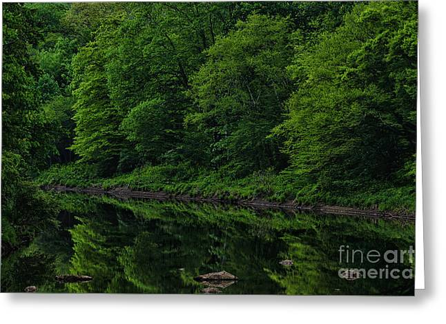 Williams River Spring Reflections Greeting Card by Thomas R Fletcher
