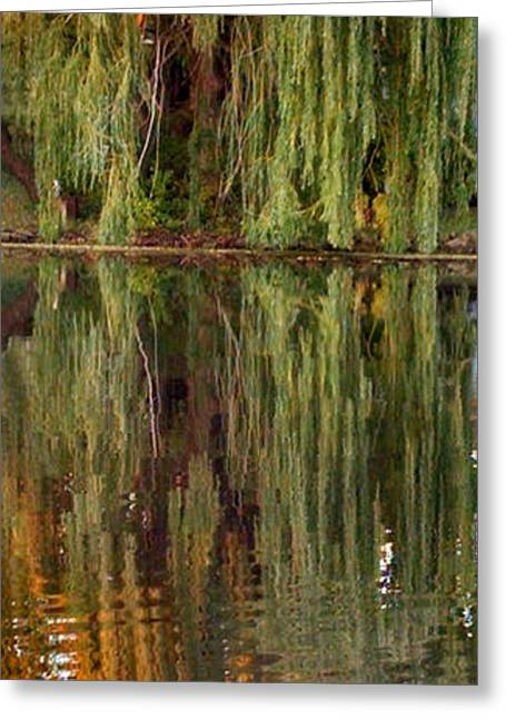 Willow Lake Greeting Cards - Willow Reflection Greeting Card by Stephanie Forrer-Harbridge