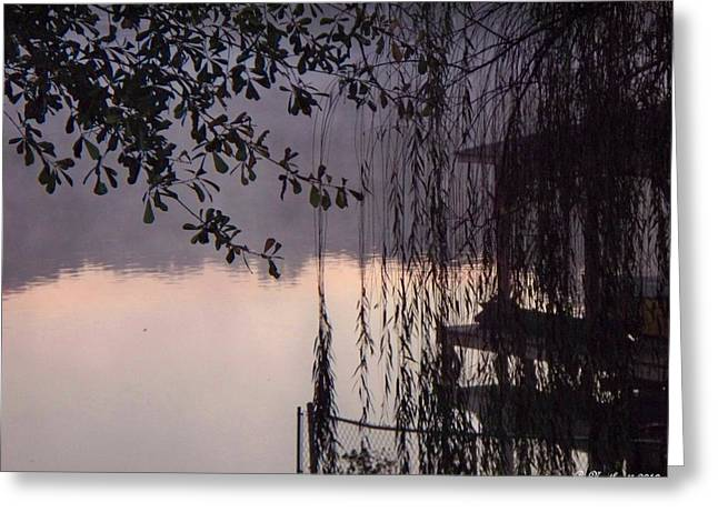 Recently Sold -  - Willow Lake Greeting Cards - Willows Dawn Greeting Card by Betty Northcutt