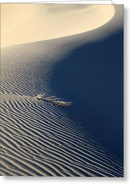 Sand Patterns Greeting Cards - Wind and sand design Greeting Card by Pierre Leclerc Photography