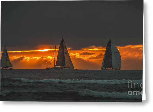 Sailboats In Water Greeting Cards - Wind And Water Greeting Card by Mitch Shindelbower