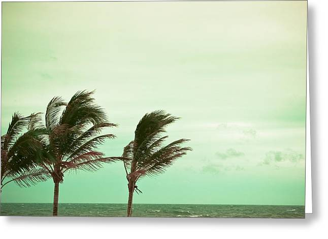 Ocean Photography Greeting Cards - Wind Factor Greeting Card by Colleen Kammerer