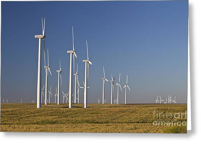 Land Use Greeting Cards - Wind Farm In Wheat Field Greeting Card by Inga Spence