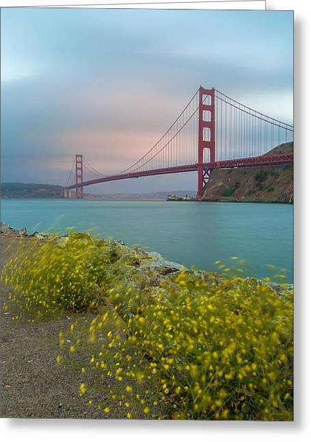 San Francisco Bay Greeting Cards - Wind-Fog-and-The Bay Greeting Card by Jonathan Nguyen