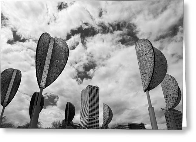 Milwaukee Greeting Cards - Wind Leaves Greeting Card by Josh Eral