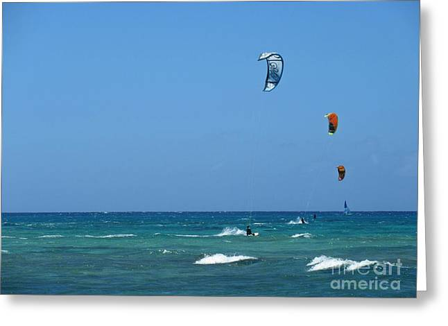 Surfing Photos Greeting Cards - Wind Surfers Greeting Card by Crystal Loppie