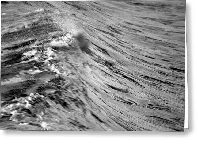 San Clemente Surfing Greeting Cards - Wind Swept Greeting Card by Brad Scott
