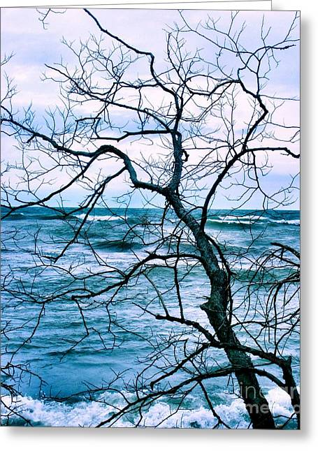 Blue Green Wave Greeting Cards - Wind Swept Greeting Card by Heather King