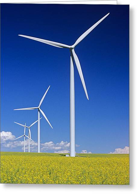 Long Shot Greeting Cards - Wind Turbines In Canola Field, Near St Greeting Card by Dave Reede