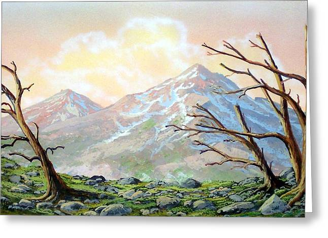 Pacific Crest Trail Greeting Cards - Windblown Greeting Card by Frank Wilson